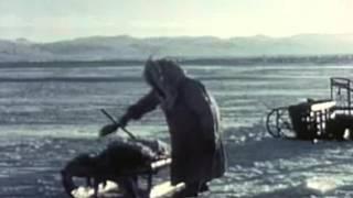 The Isolierband - Alaska