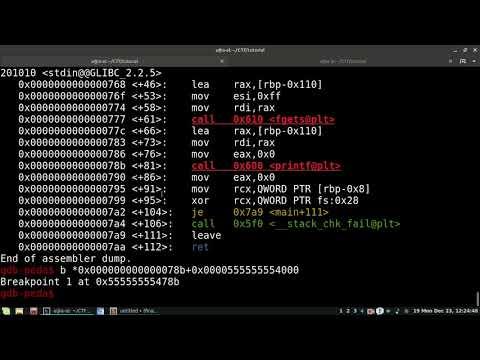 Binary Exploitation Tutorial. Format String Attack.