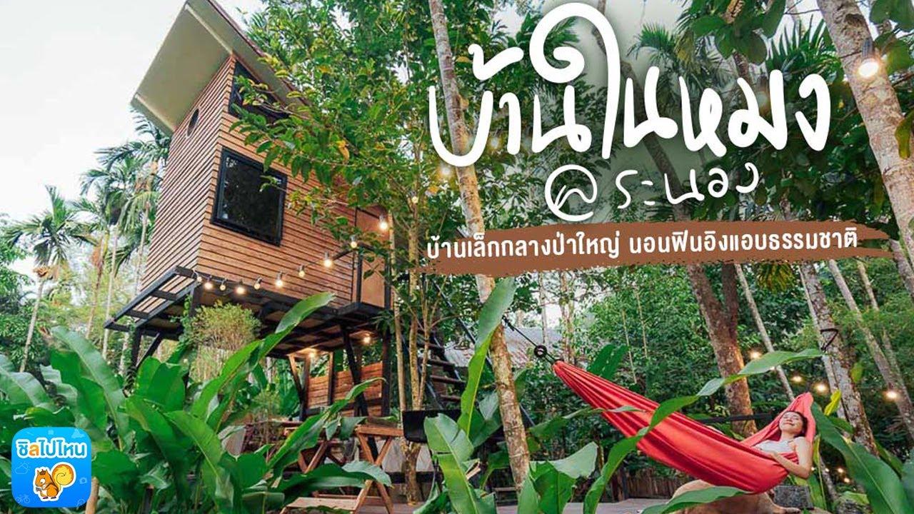 บ้านในหมง@ระนอง บ้านเล็กกลางป่าใหญ่ นอนฟินอิงแอบธรรมชาติ
