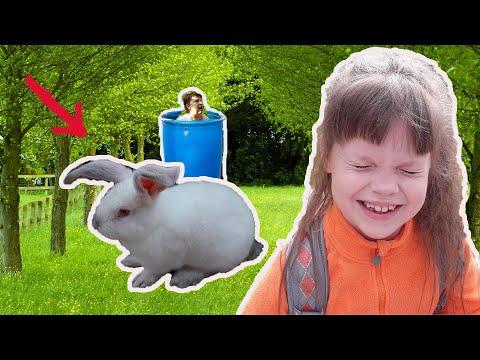 Как не заскучать! Лизушкины питомцы играют в прятки с  кроликом.