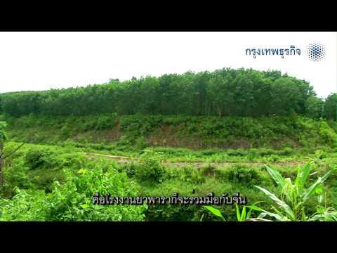 Think Asean EP9 Luangnamta