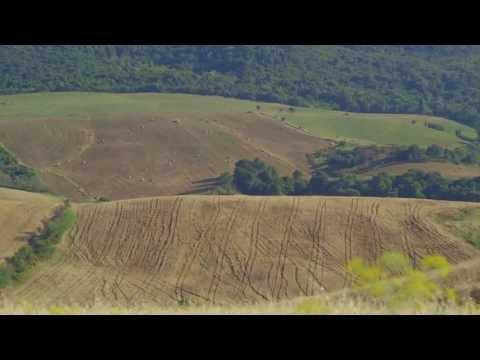 Baracca Sound - Leone dentro me
