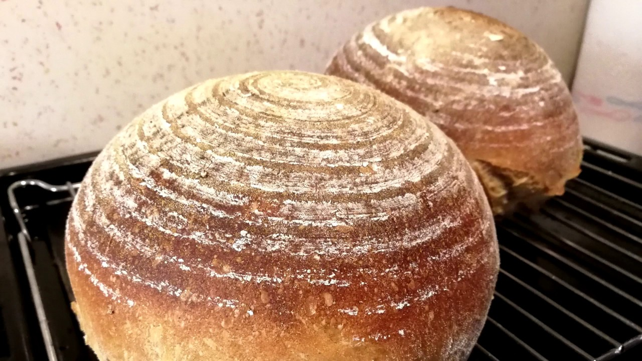 Download Postup na základní pšenično žitný kváskový chléb