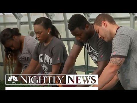 Texas College Turns Its Losing Football Team Into A Winning Farm   NBC Nightly News