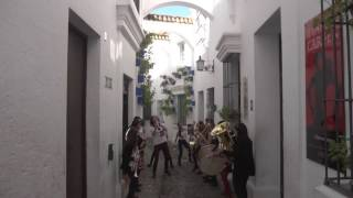 odessa bulgarish   balkan paradise orchestra