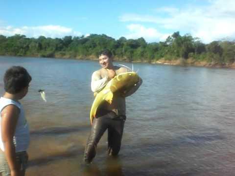 Pescaria de Pirarara no rio Araguaia Luiz Alves pescador Fernando