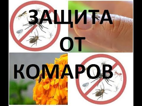 Отеки,пятна,аллергия и зуд от укусов комаров