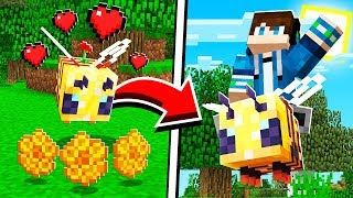 How to TAME and RIDE BEES in Minecraft! (Pocket Edition, PS4, Xbox, PC, Switch)