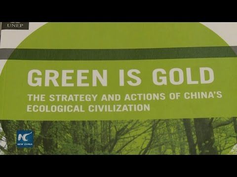 China's green strategy conducive to global sustainable development