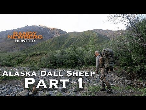 2018 Alaska Dall Sheep with Randy Newberg (Part 1 of 9)