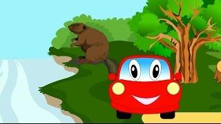 Мультик про машинку. Машинка Бодя гуляет по лесу. Изучаем лесных животных
