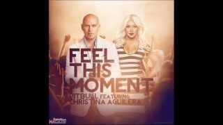Feel This Moment (without Pitbull) MP3