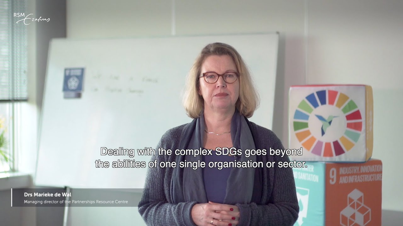 SDG 17: Academic insights into partnerships for the goals