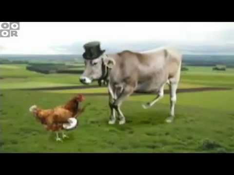 Cartoon Network - Check Or Fail - Jazz Cow Bump (Cyriak)