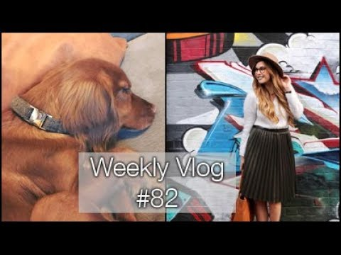When Two Become One...again | xameliax Weekly Vlog #82