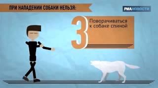 Что делать, если напала собака(Рекомендации кинолога. По материалу РИА-новости., 2015-04-28T19:23:04.000Z)