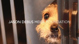 Petco Foundation Hope Gala 2015