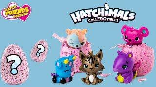Hatchimals Friends • Przyjaciele na zawsze • unboxing