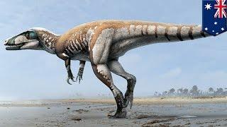 Video Pameran Dinosaurus Terbesar di Tokyo download MP3, 3GP, MP4, WEBM, AVI, FLV Februari 2018
