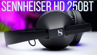 Sennheiser HD 250BT Unboxing & Review   Premium Headphones On a Budget??