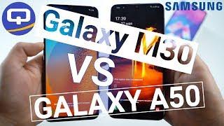 Samsung Galaxy M30 и Samsung Galaxy A50. Время сравнений  QUKE.RU