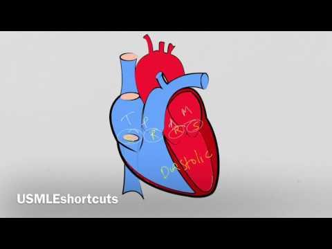 Best Remember Heart Murmurs In Seconds