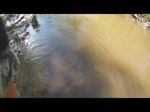 Norristown Farm Park Stoney Creek Angler Trout Fishing Tournament