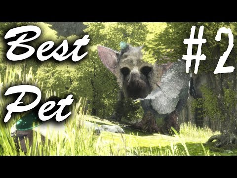 THE LAST GUARDIAN PS4 HINDI Let's Play Walkthrough- He is Best Pet - Part 2