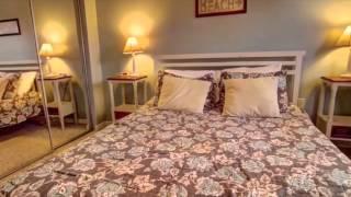Rent Siesta Key - Sandy Shore - Siesta Key Vacation Rental