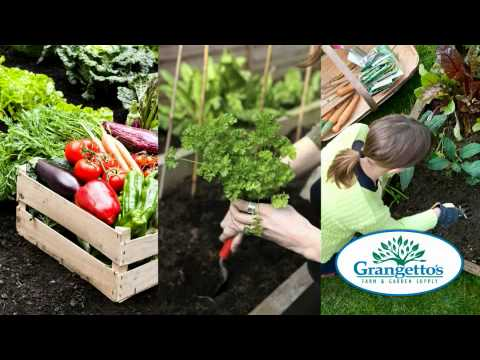 Grangettos Farm and Garden Supply YouTube