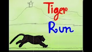 Tiger run : Animation Study No.5