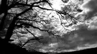 Contemplative, Melancholy & Despair Dark Ambient