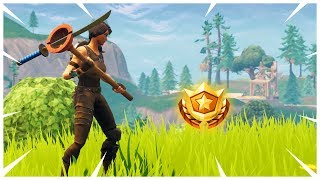 Search where the Stone Heads are Looking - Fortnite Season 5 Week 6 Challenges