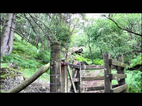 Tarn Hows Lake District