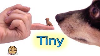 Download Small Dogs ! Tiny Puppy Dog Surprise Blind Bags Cookie Swirl C Video Mp3 and Videos