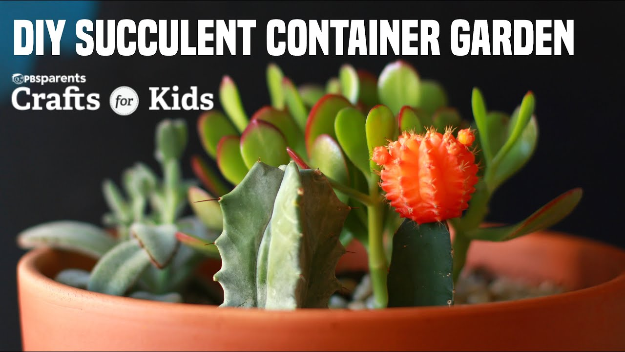 Diy Succulent Container Garden Pbs Parents Crafts For Kids