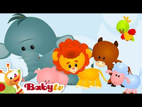 Learning Animal Sounds and Names for Kids & Toddlers | BabyTV