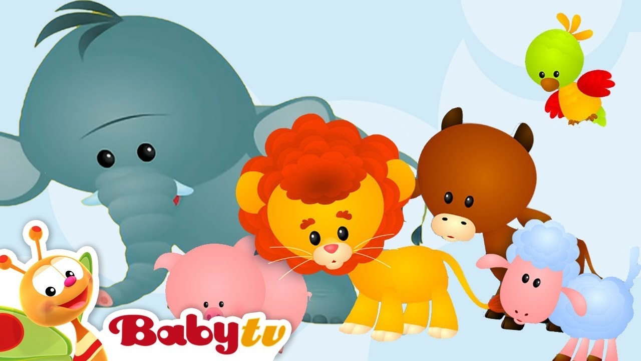 Animal Sounds And Names For Kids Amp Toddlers Babytv Youtube
