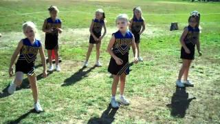 Wildcat Cheer