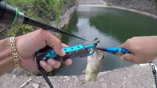 Рыбалка в южной корее.басс