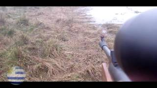 "Caza de Pato con chumbera (rifle de aire comprimido 5.5 mod. gs1250 nitro pistón ""Rochester"")."