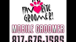 About Me 1 - Intro to Dede Croy My Favorite Groomer LLC thumbnail