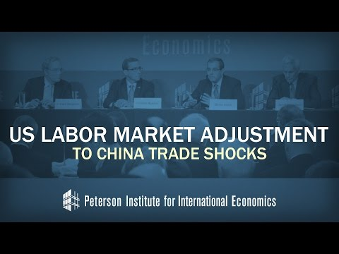 US Labor Market Adjustment to China Trade Shocks