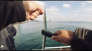 Морская рыбалка Ловим саргана на Одесском пляже Рыбалка на Черном море Ловля саргана на бомбарду