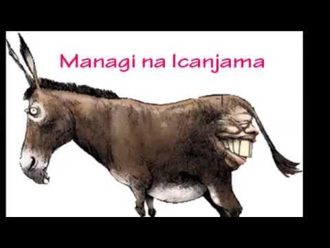 managi 16th july