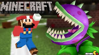SUPER MARIO Minecraft Mod Plants Vs Zombies 2 Birthday Party!