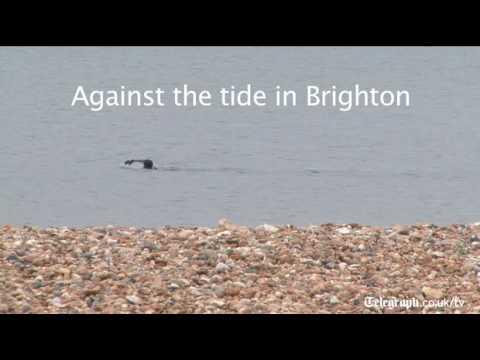 Against the tide in Brighton