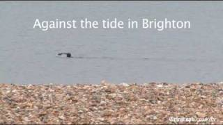 Against the tide in Brighton