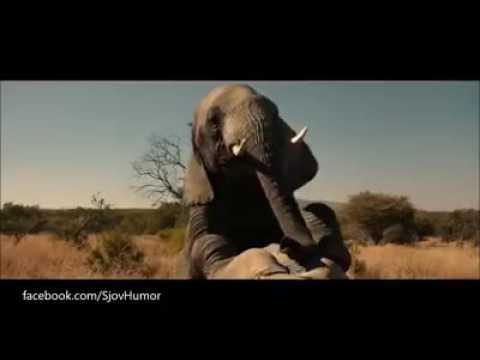 The brothers grimsby - Elephant scene