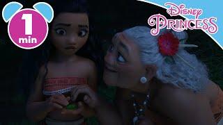 Moana   Moana To Save Her Island   Disney Princess
